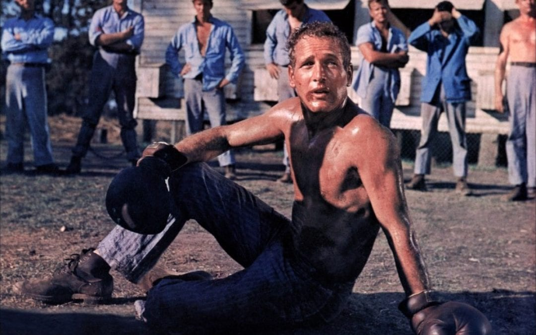 Icons of Restless Thinking: Paul Newman